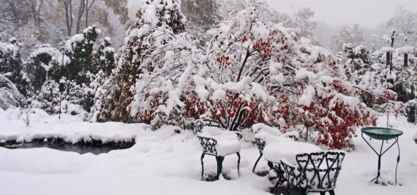 This is an old photo from a 2011 snowstorm.