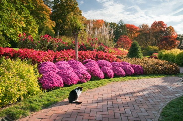 Ok, I cheated. This is Longwood Gardens but some garden centers are just as beautiful. Courtesy of Longwood Gardens.