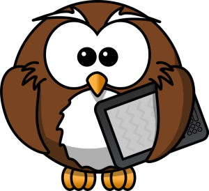 Kindle with owl