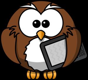 Kindle with owl