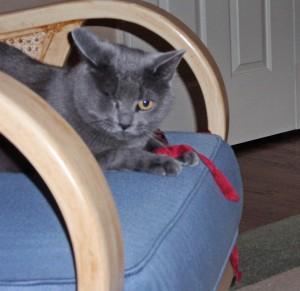 Morgan likes to keep the ribbon close!