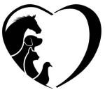 animal-adoption1