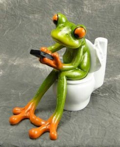 frog-on-toilet-pinterest